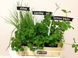 diy herb garden diy herb garden u2013 artcreator u2013 the dyi blog for interior design
