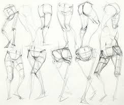 100 best anatomy leg images on pinterest anatomy reference