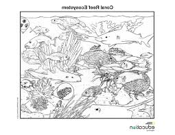 coral reef ecosystem national geographic education 468851