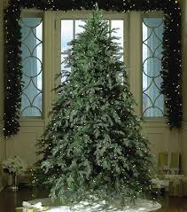 123 best tree ideas images on