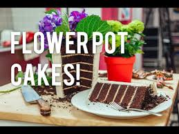 Where To Buy Edible Flowers - how to make a flower pot out of cake chocolate cake coffee