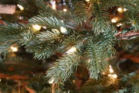 nature s own fraser fir 7 5ft artificial tree staylit