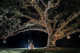 Lit Branches Night Wedding By Bride U0026 Blossom Nyc U0027s Only Luxury Wedding