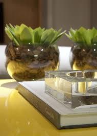 indoor garden ideas apartment on interior design vegan plant