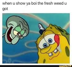 Memes Spongebob - weed memes funny marijuana and pot pics high guy meme