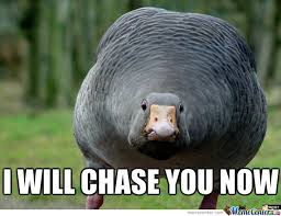 Chase You Meme - i will chase you now by ivan mardov meme center