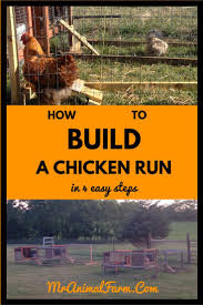 best 20 building a chicken run ideas on pinterest chicken