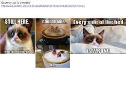 9 Best Grumpy Cat Memes - memes and museums