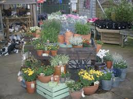 13 best container displays images on pinterest garden centre