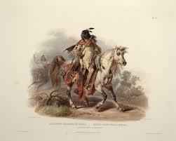 blackfoot native plants blackfoot indian tribe blackfeet blackfoot indian tribe online