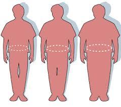 histoire de sexe bureau obésité wikipédia