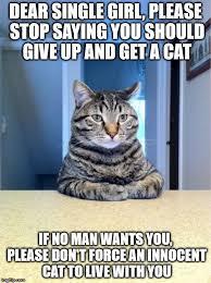 Single Girl Meme - take a seat cat meme imgflip