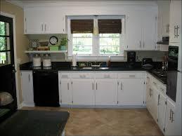 Wood Cabinet Colors Kitchen 100 Kitchen Cabinet Colours Kitchen Cabinet Colours
