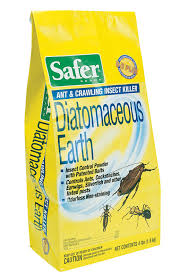 diatomaceous earth kills fleas ticks roaches etc inside and
