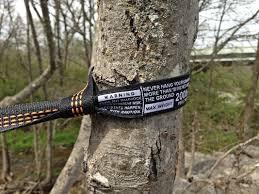 Hammock Bliss Tree Straps Westroke Eno Doublenest Hammock And Atlas Straps Review