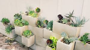 home design cinder block succulent garden style large the