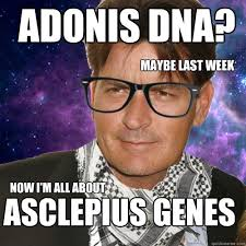 Adonis Meme - adonis dna maybe last week now i m all about asclepius genes