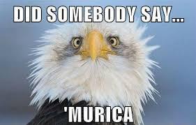 Murica Memes - did somebody say murica memes