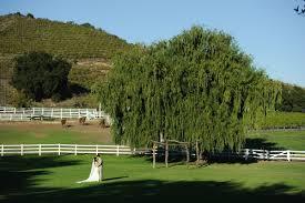 wedding locations los angeles saddlerock ranch best outdoor wedding locations los angeles