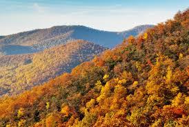smoky mountains national park foundation