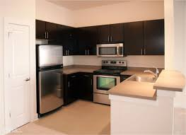 Stylish Small Apartment Kitchen Design That Make Your Kitchen Look - Kitchen cabinet apartment