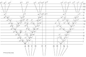 charles darwin the evolutionary tree of three major theory