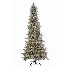 sterling 6 5 ft pre lit lightly flocked canyon fir christmas tree
