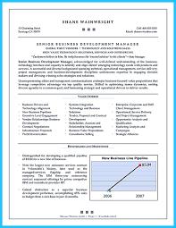 Sample Resume For Business Development Executive by Business Intelligence Developer Resume Sample Virtren Com