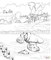 coloring pond coloring page