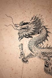 chinese style dragon drawing royalty free stock image image