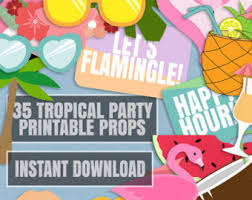Tropical Party Themes - pineapple photobooth etsy