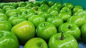 fruit fresh free photo green freshness delicious apple fresh fruit max