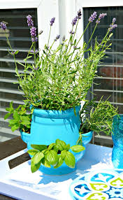 Potted Herb Garden Ideas How To Plant A Container Herb Garden 4 Real