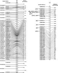 Linkage Map Genetic Mapping And Qtl Analysis For Sugar Yield Related Traits In