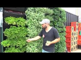 wall garden vertical garden installation u0026 operation youtube