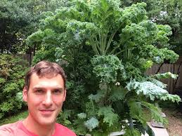 how to grow huge produce fast with a tower garden youtube