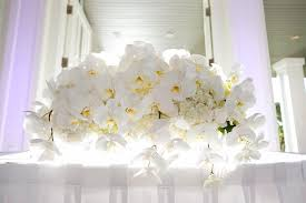orchid centerpieces roots oahu hawaii florist centerpieces