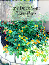 native english plants how does your garden grow patina and paint