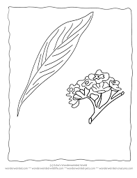 leaves to color and cut out kids coloring