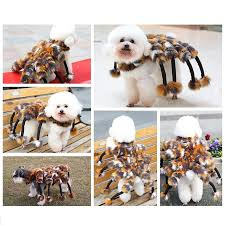 Spider Halloween Costume Dogs Buy Wholesale Pet Dog Halloween Costumes China Pet Dog