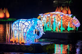 rivers of light dining package rivers of light dining packages can now be booked