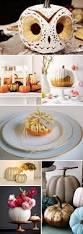 halloween pumpkin designs 25 best pumkin ideas on pinterest halloween pumpkin designs