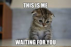 Meme Waiting - this is me waiting for you sad kitten quickmeme