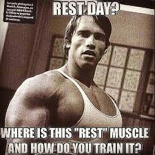 Arnold Gym Memes - i don t always take a rest day but when i do it s because of