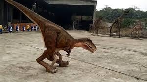 velociraptor costume size realistic animatronic velociraptor costume vedio