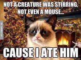 Cat Christmas Memes - over 25 tips for a stress free holiday midlife rambler