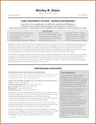 examples of successful resumes executive summary example resume resume examples and free resume executive summary example resume account manager job seeking tips executive summary resume vip resume1 gray page 1 executive