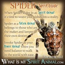 spider symbolism meaning spirit totem power animal