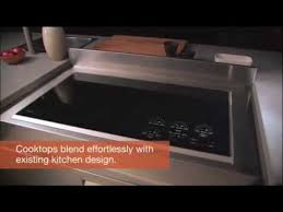 Cooktop Electric Ranges Wolf Electric Cooktop Youtube