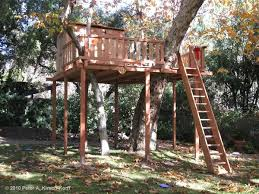 Backyard Forts Kids 8 Best Tree Houses Images On Pinterest Kid Tree Houses Tree